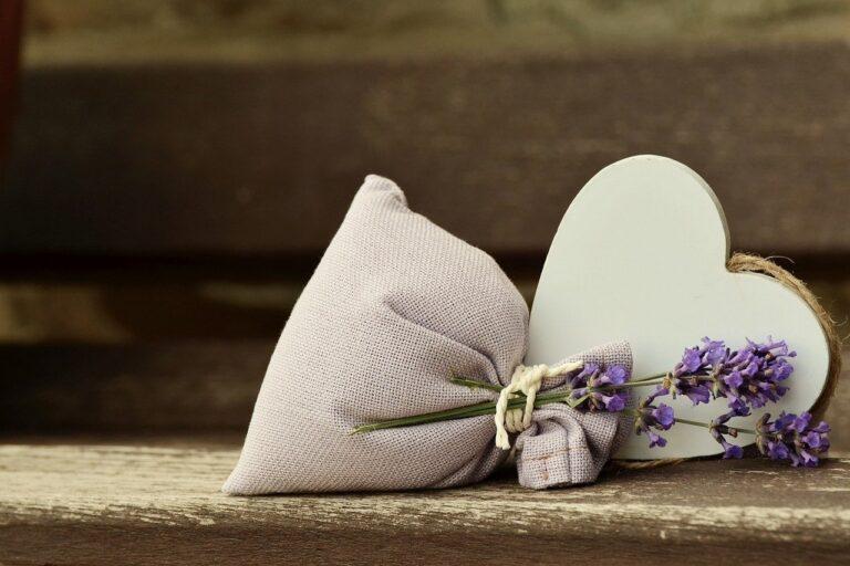 Jak wybrać pochłaniacz zapachów?